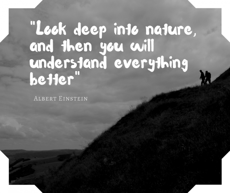%22look-deep-into-nature-and-then-you-will-understand-everything-better%22