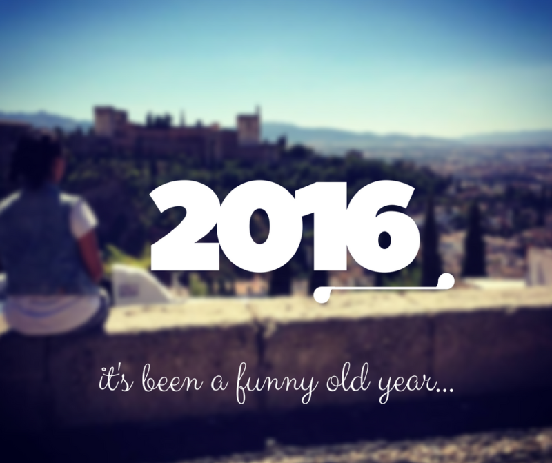 Looking out over the AlHambra in Spain 2016 image